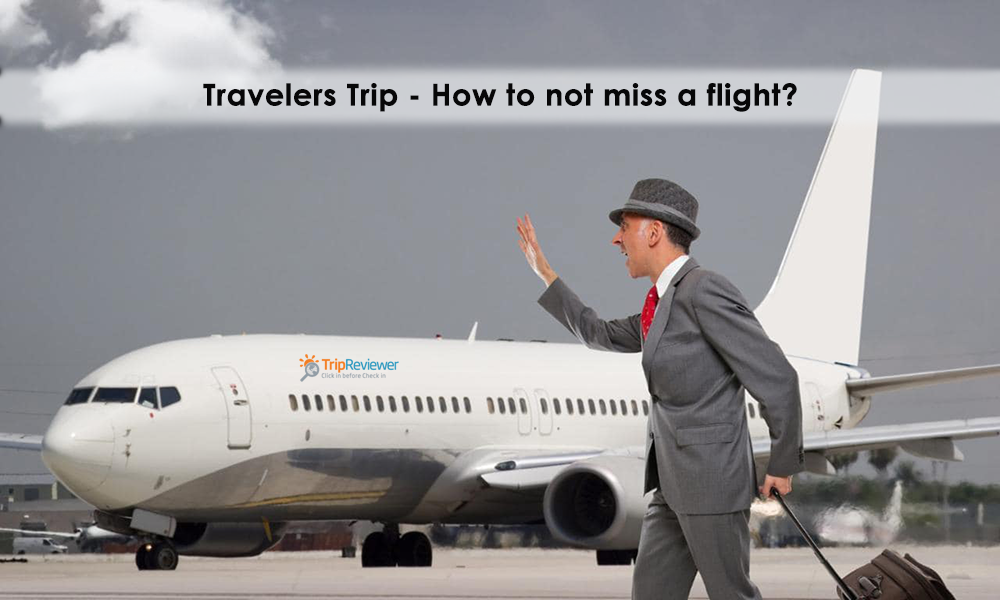 traveler reviews