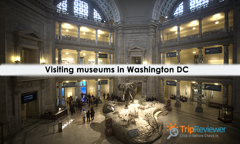 visiting-museums-in-washington-dc