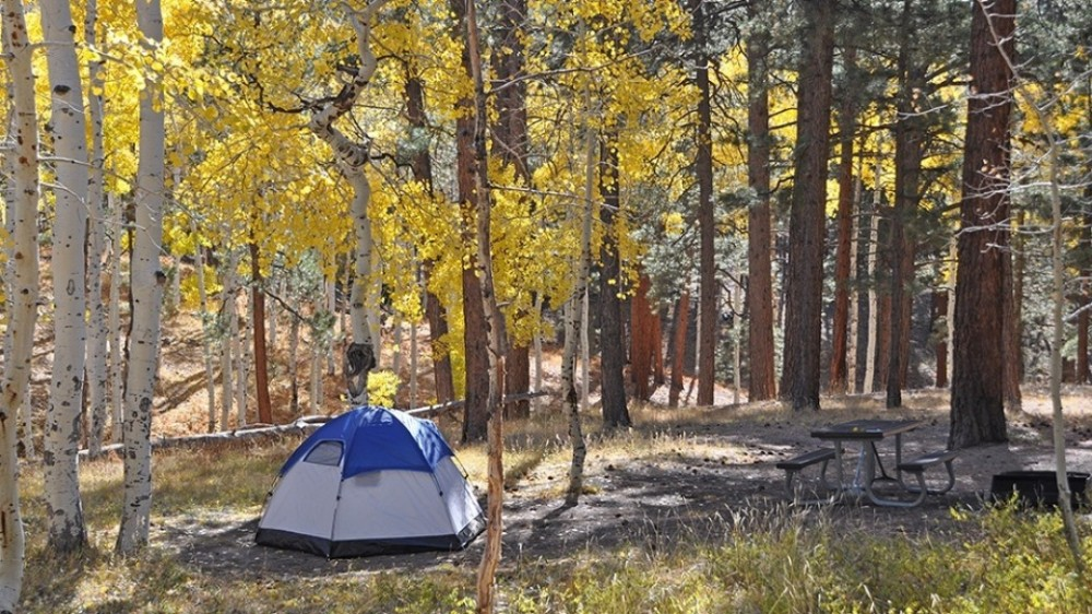 camp_northrimpg44